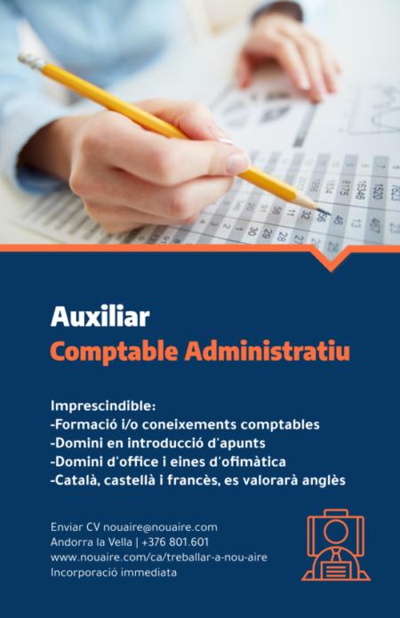 Auxiliar Comptable Administratiu 2020